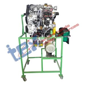 Cut Section 4 Stroke 4 Cylinder Diesel Engine